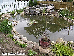 Garden Pond - DIY Garden Pond - Build Garden Pond
